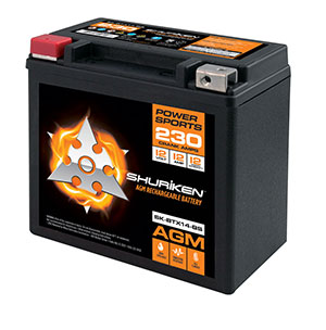 230 CRANK AMPS / 12AMP HOURS AGM Power Sports 12V Battery